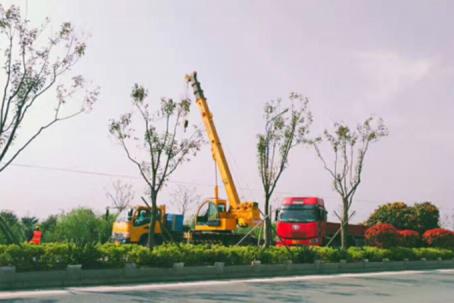 常熟绿化工程